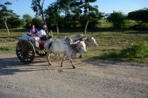 Burma_161119_1455