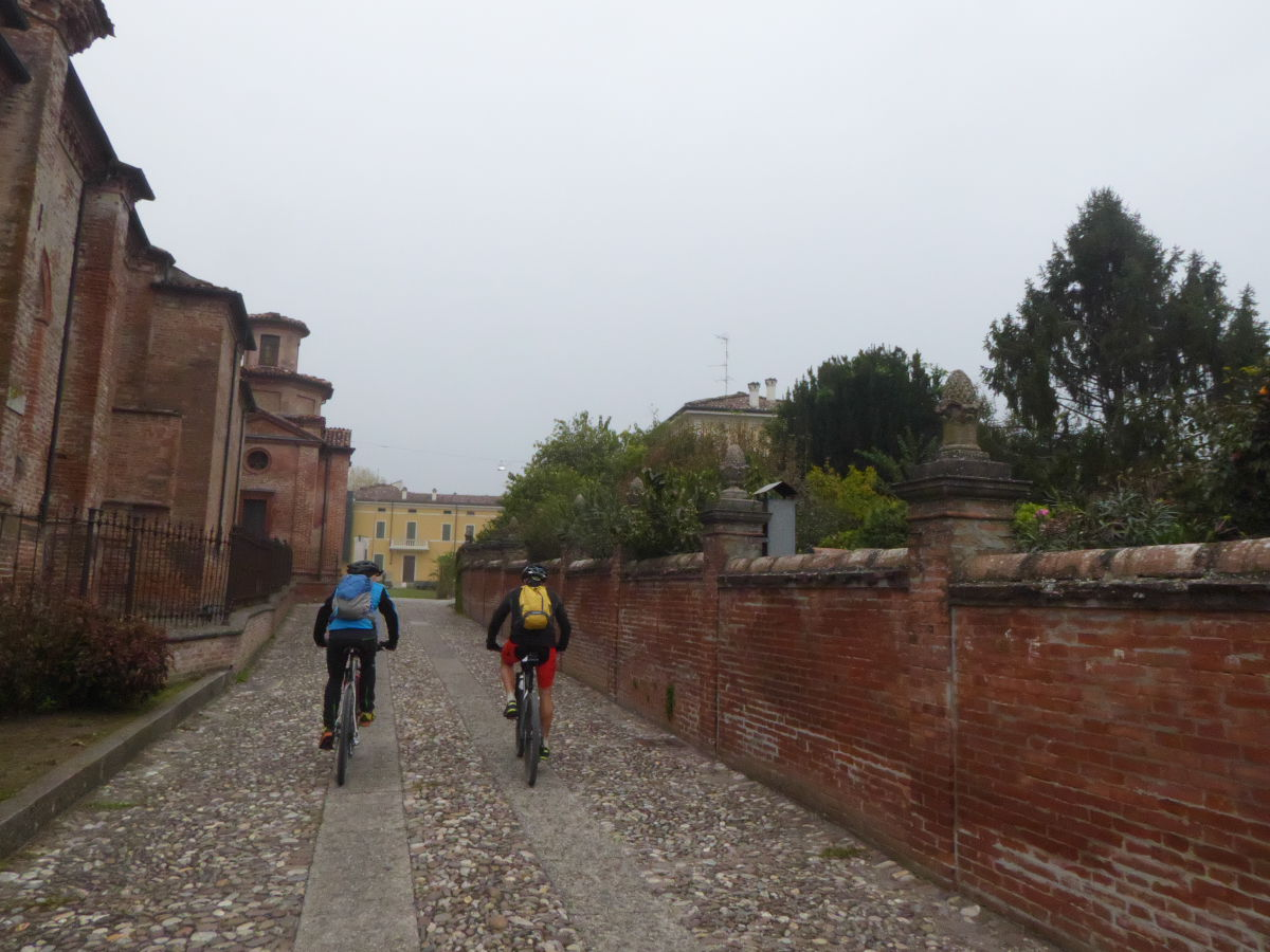 Nutria_Bike_171022_07