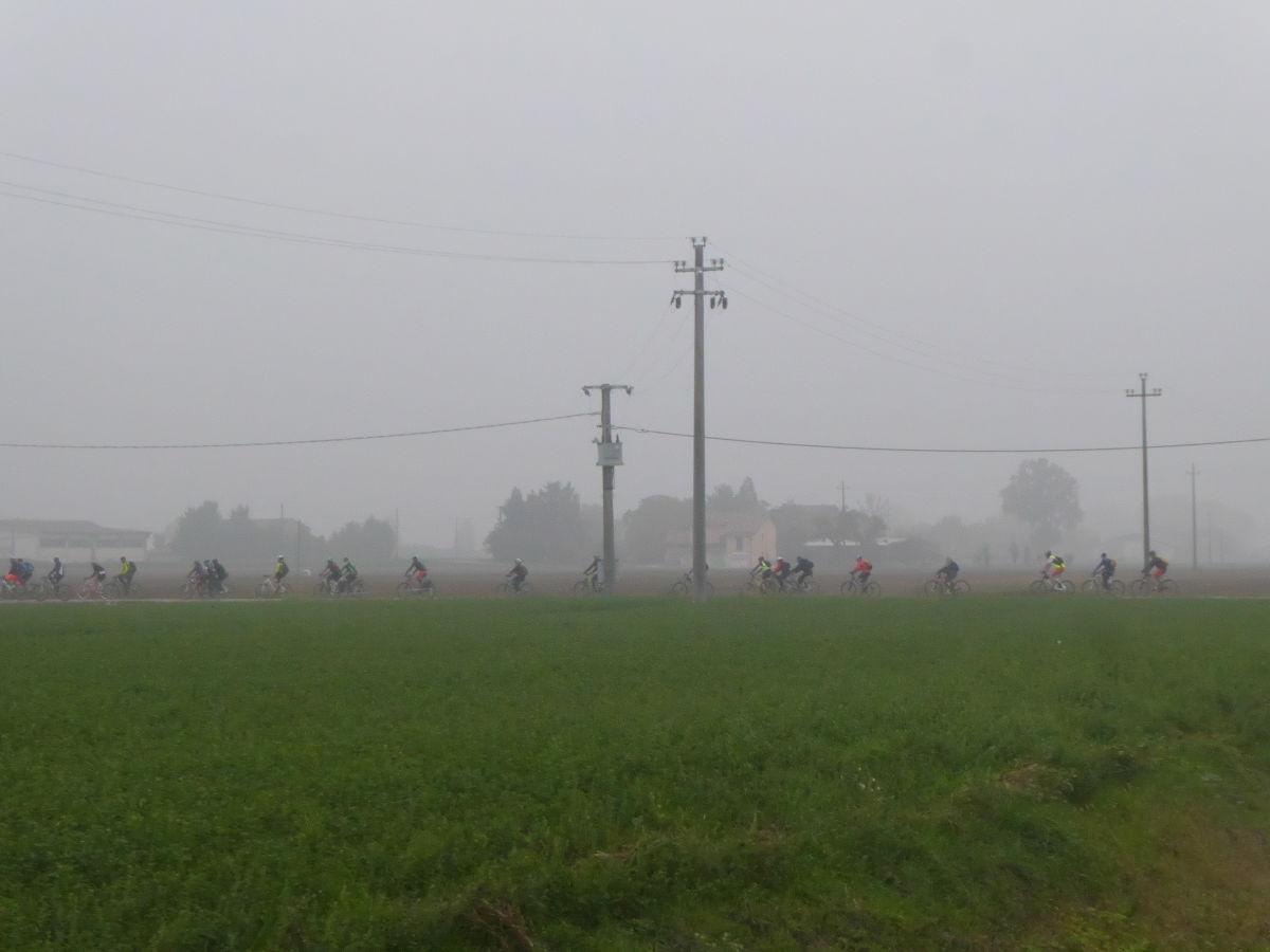 Nutria_Bike_171022_18