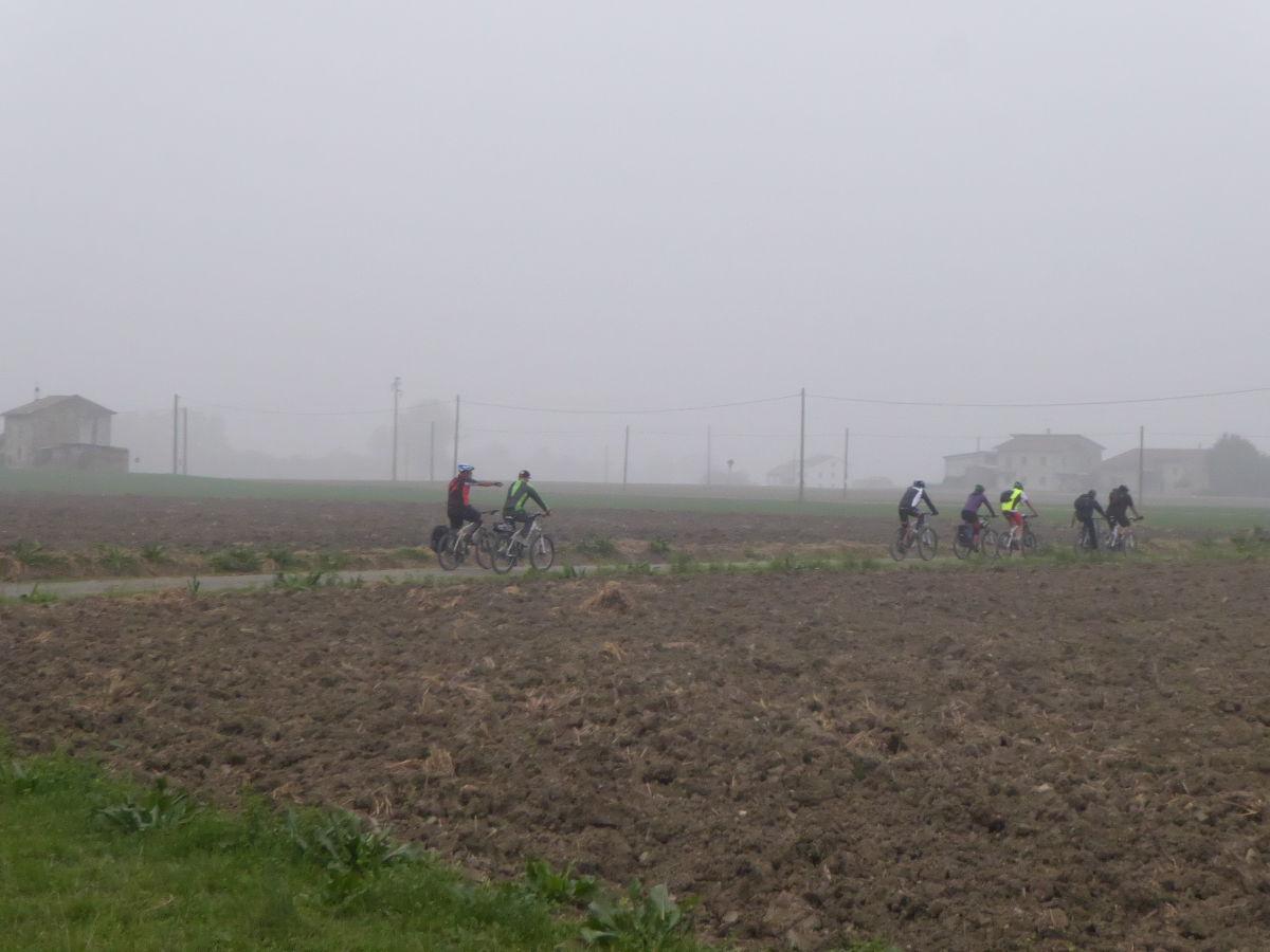 Nutria_Bike_171022_29