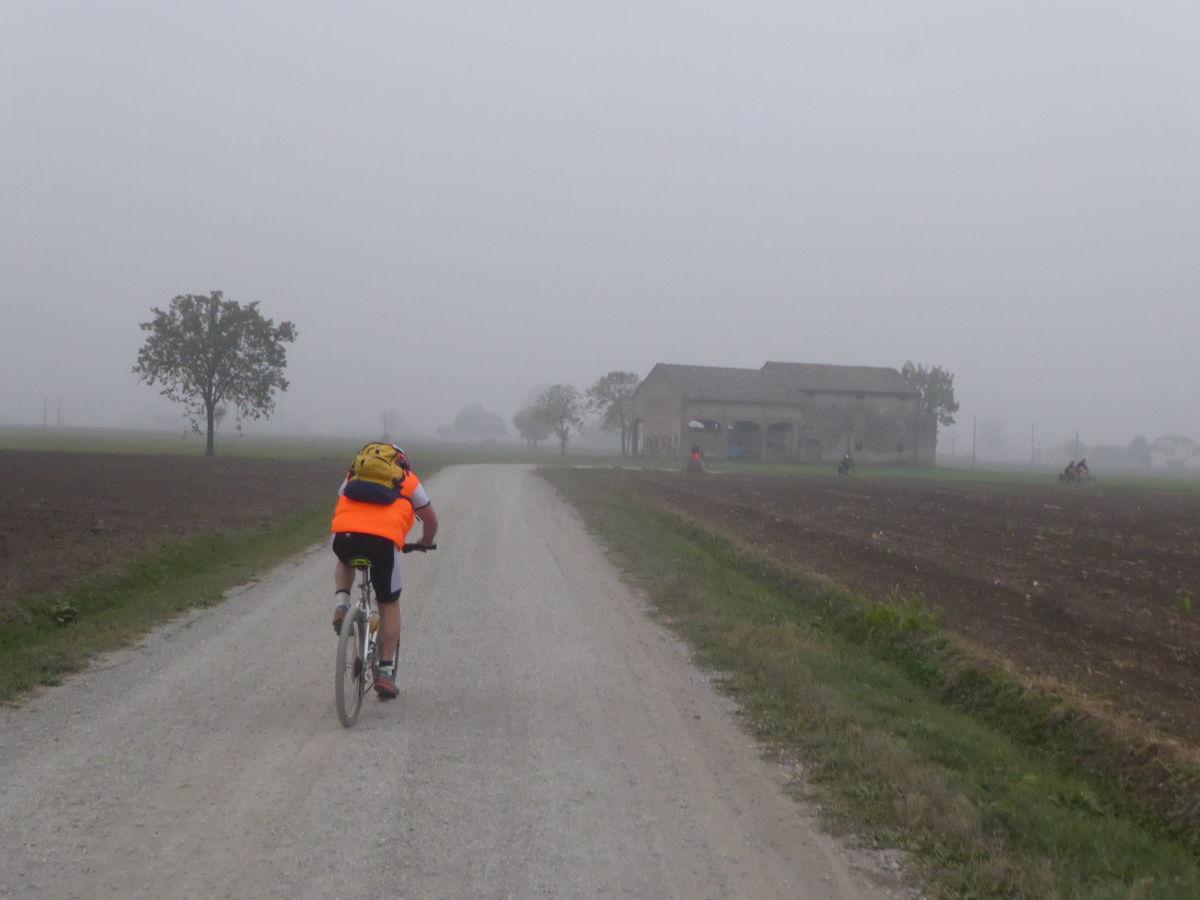 Nutria_Bike_171022_33
