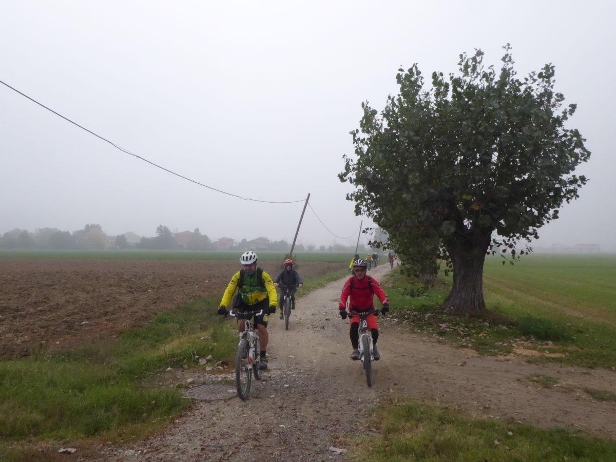 Nutria_Bike_171022_51