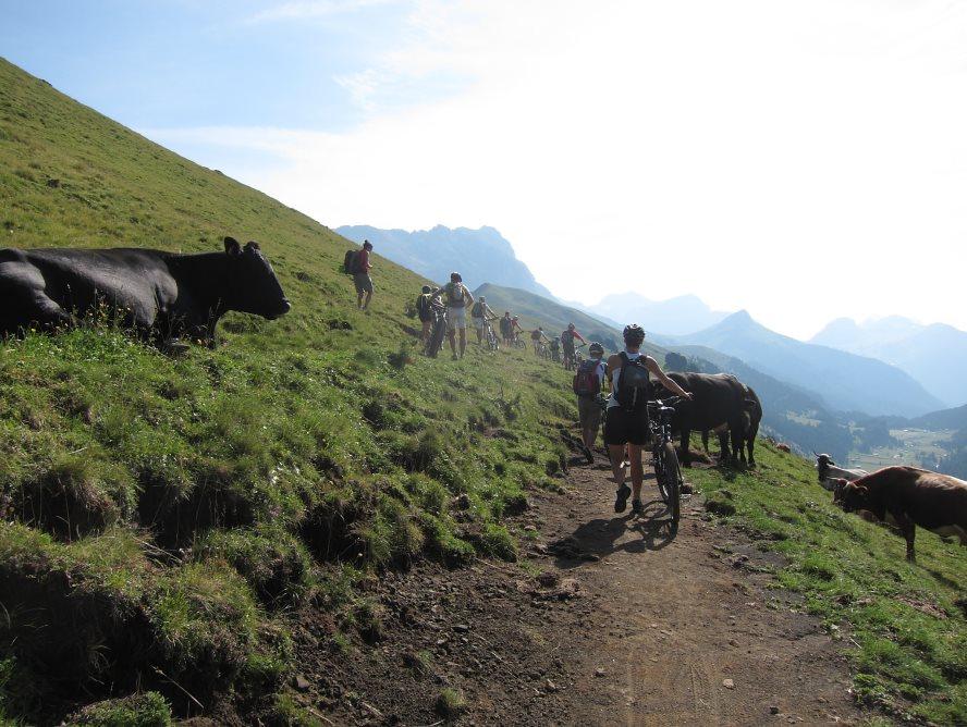Alpe di Siusi 2015 GG2 (11)