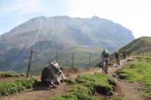 Alpe di Siusi 2015 GG2 (19)