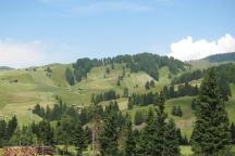Alpe di Siusi 2015 GG2 (28)