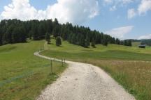Alpe di Siusi 2015 GG2 (40)