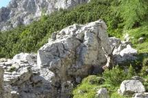 Dol.Friuli.200720-227